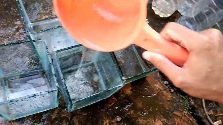 Rutin Mengganti Air Ikan Cupang