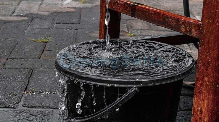 Siapkan Air Bersih Untuk Mengolah Daun Ketapang