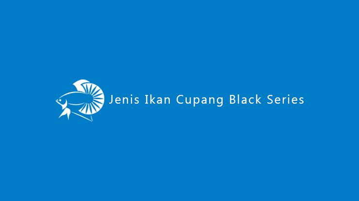 Jenis Ikan Cupang Black Series 1