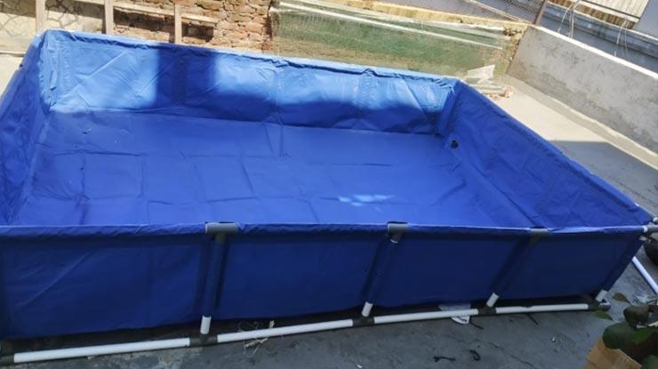 Menyiapkan Wadah Budidaya Kutu Air